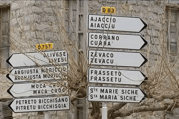 Départementales 2015  éclairage sur le canton du Taravo-Ornano
