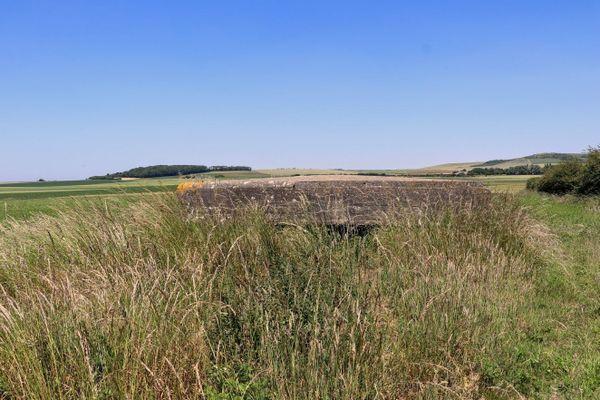 Derrière les hautes herbes, un ancien bunker de la base aérienne allemande d'Audembert.