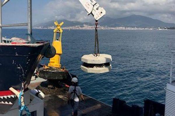 Deux corps-morts éco-conçus ont été immergés au dans le golfe d'Ajaccio.