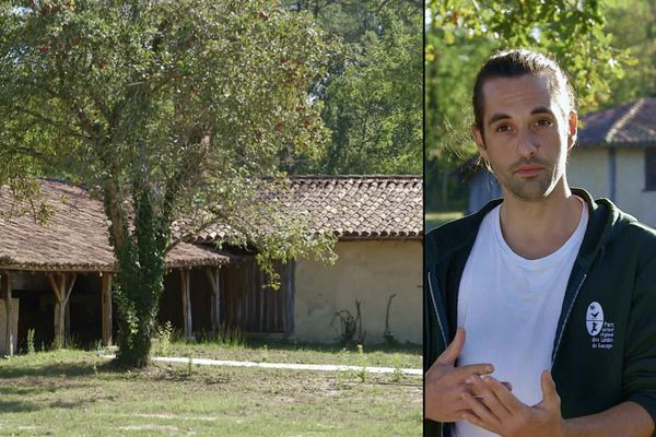 Hadrien Rozier, chargé de mission inventaire du patrimoine bâti