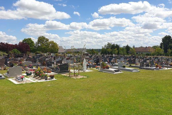 """Des """"tapis de sedum"""" se trouvent en périphérie des tombes, ce qui fait un rendu plus végétal / Fagnières, 29 juin 2020"""