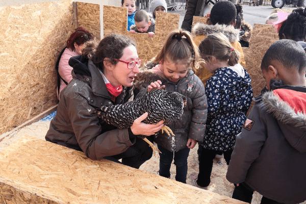 Le jeune public découvre les animaux de la ferme à Anymania