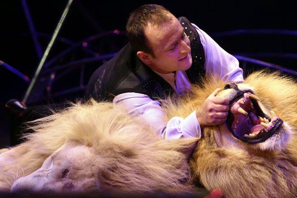 Les animaux sauvages dans les cirques itinérants seront bientôt proscrits