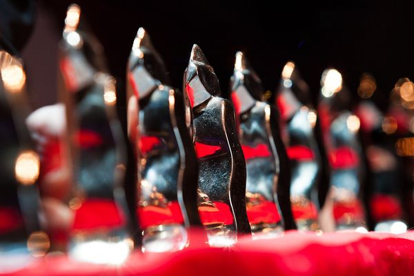 170 films en compétition, trois catégories (Internationale, Nationale, Labo), cinq jurys...Samedi soir, à partir de 18h, le 35ème festival du court-métrage de Clermont-Ferrand va dévoiler son palmarès.