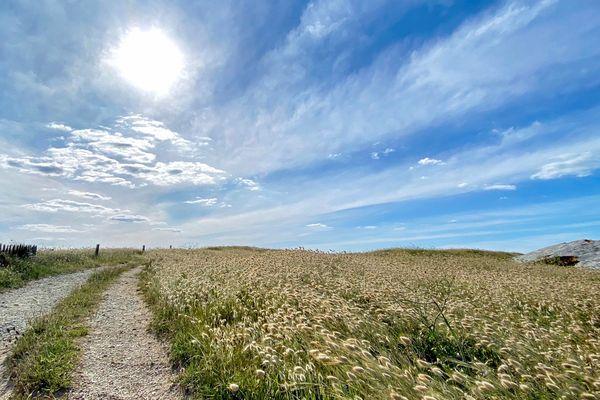 Sentier de la pointe du Conguel à Quiberon (56)