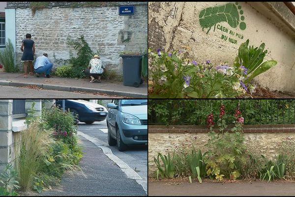 """L'association """"Caen au pied du mur"""" vient de signer un partenariat avec la Ville"""