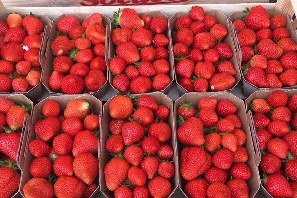 L'amour retrouvé pour les produits locaux pendant la crise du coronavirus a fait retrouver le goût pour la fraise du Périgord