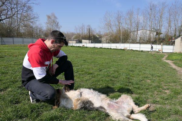 Willy veille au bon comportement et à la bonne sociabilité des animaux. Educateur canin, il prodigue aux futurs maîtres les meilleurs conseils pour accueillir au mieux les chiens à leur domicile.