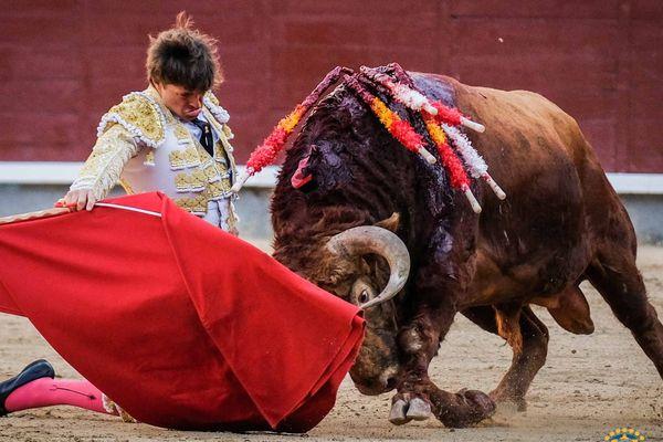 A genoux, pleine piste : le début de faena de Juan Leal à Portador