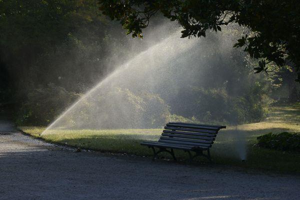 7h00 du matin, le Jardin Public, niché au coeur de Bordeaux, ouvre ses grilles