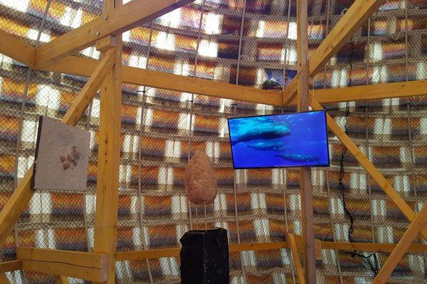 Des documentaires du commandant Cousteau et de Yann Arthus Bertrand sur l'état des océans sont diffusés en boucle