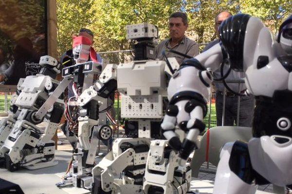 Les robots prêts pour la course