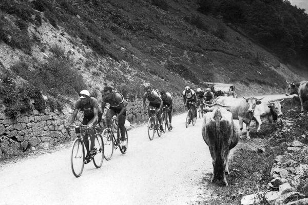 Le Cantalien Antonin Magne, Guy Lapebie et Félicien Vervaecke au col du Tourmalet lors de la 18ème étape du Tour de France 1934, entre Tarbes et Pau.