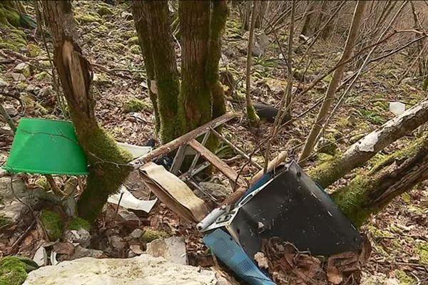 Le sol de la forêt jonché de détritus à Mouthier-Haute-Pierre
