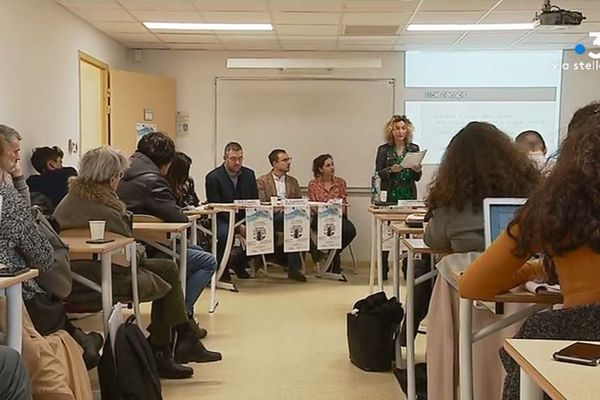 Le thème a été au cœur d'une journée d'étude internationale consacrée aux séries à l'université de Corse le 11 décembre dernier.