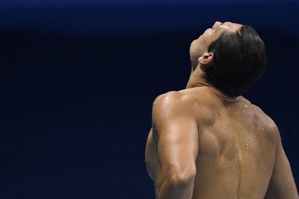 Florent Manaudou arrive second pendant la finale du 50 mètres nage libre aux Jeux Olympiques de Rio.