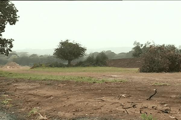 Les terres qui accueilleront l'éco-quartier et la zone artisanale