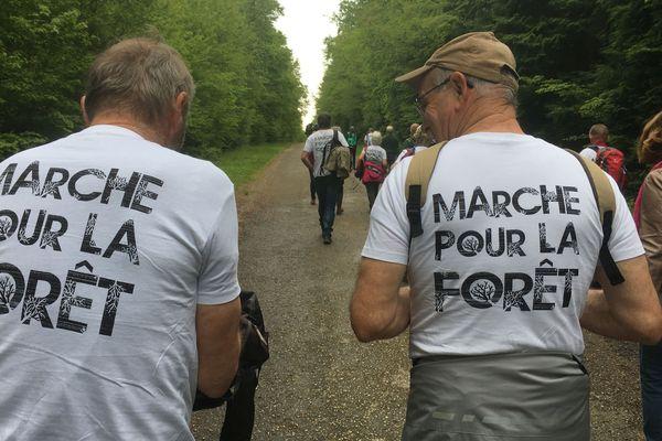 Des salariés de l'ONF et des associations de protection de l'environnement font une marche de 17 km ce samedi 18 mai pour dénoncer l'industrialisation de la forêt et la privatisation de la gestion des forêts publiques.