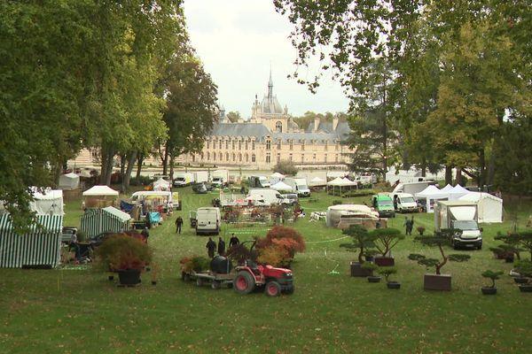 Préparatifs des Journées des plantes de Chantilly 2020
