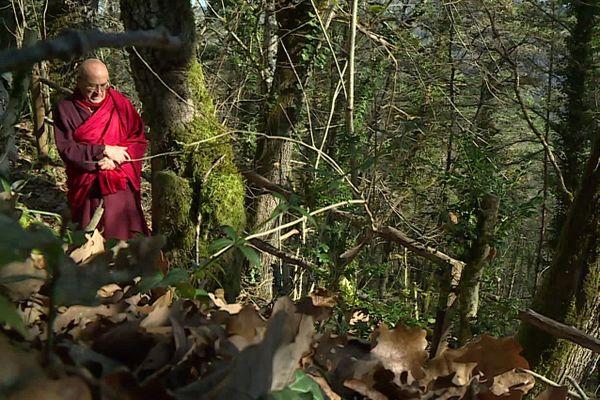 Matthieu Ricard aime marcher dans la nature, ici dans une forêt près de son village en Périgord Noir.