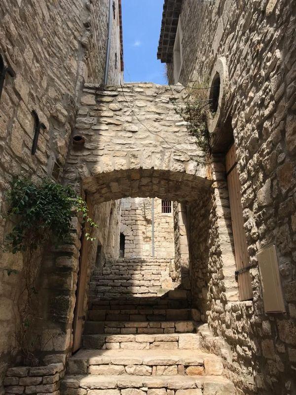 Aujourd'hui, dans les rues de Vézénobres, on trouve encore des pousses le long des murs.