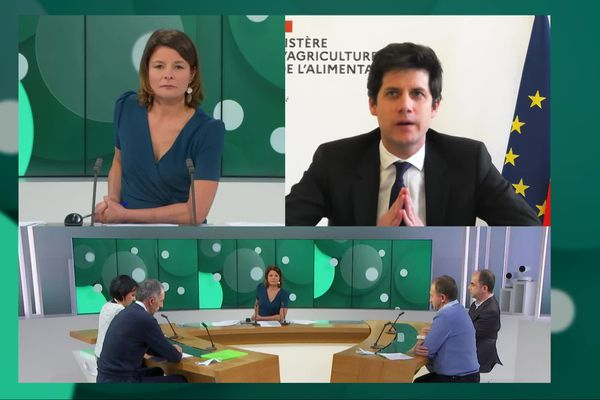 """Edition spéciale """" Grippe aviaire : une catastrophe annoncée ?"""" Sandrine Papin accueille sur son plateau des représentants de la profession et le ministre de l'Agriculture Julien Denormandie."""