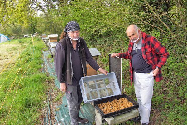 Yoann et Denis Jaffré se félicitent du rôle préventif de leur piège qui évite d'avoir à détruire des nids de frelons asiatiques