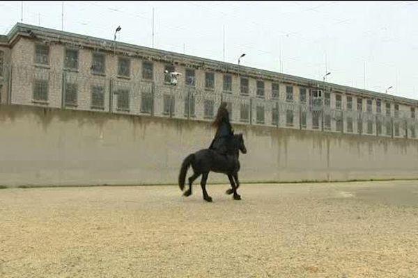 Camille et son cheval  surgissent sous les fenêtres des détenus des Baumettes, à Marseille