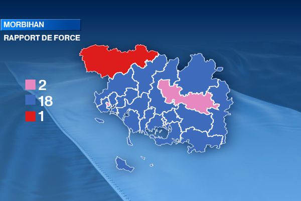 Couleur politique du Morbihan à l'issue des élections départementales 2015. Rose : gauche - Bleu : droite - Rouge : régionalistes