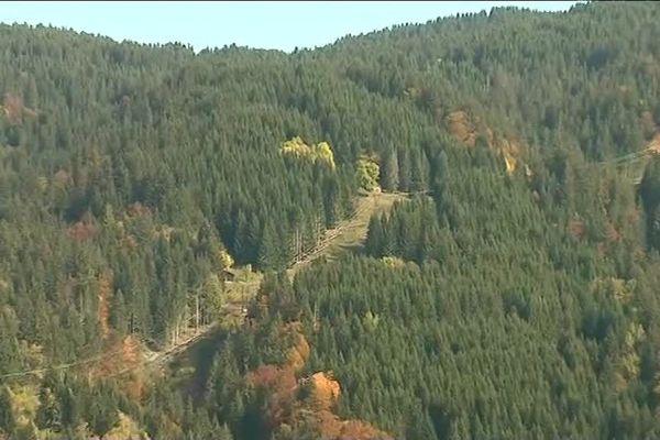 Le drame s'est produit sur un chemin à la lisière d'un bois, sur la commune de Montriond, en Haute-Savoie.