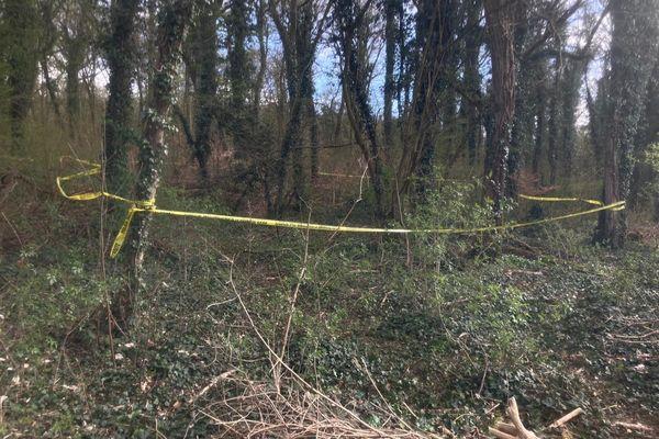 Les enquêteurs ont délimité un carré de vingt mètres sur vingt pour analyser le lieu où ont été découverts les ossements humains.