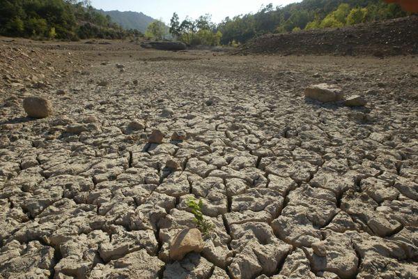 ILLUSTRATION. le lac du Gratadis dans le massif de l'Esterel (Var) en 2006. En 2003, à la même époque, il y avait encore de l'eau.