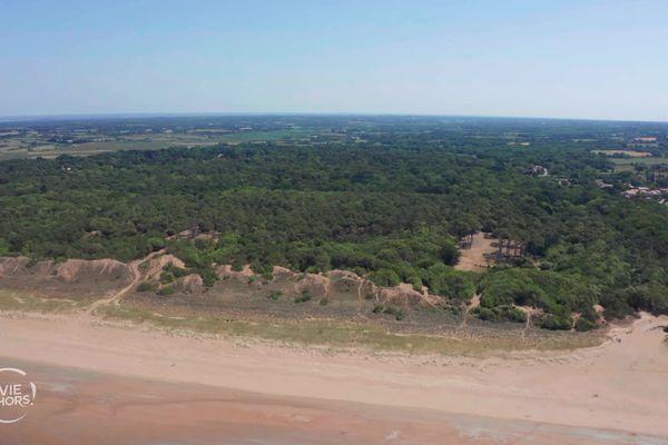 La forêt dunaire de Saint-Brévin-Les-Pins