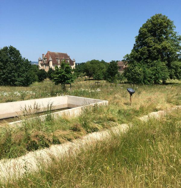 Les jardins de la Borie sont en friche depuis la mise en liquidation judiciaire de la Fondation la Borie fin mars 2015