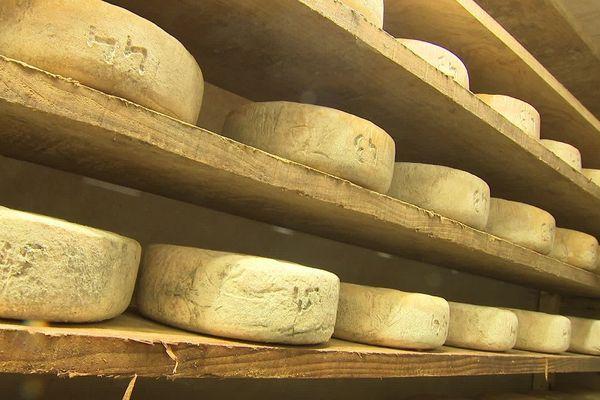"""Les fromages et les vins d'Occitanie sont dans le viseur des taxes """"Trump"""""""