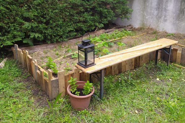 Pour s'occuper l'esprit et mieux manger, le couple bayonnais a créé un potager dans leur jardin partagé.