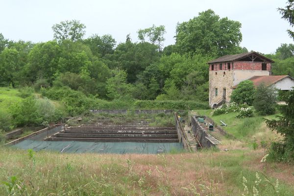 Pisciculture de l'Estrigon dans les Landes : touchée par les inondations. Les truites sont parties dans la nature quand l'eau des rivières est montée à une vitesse et une intensité exceptionnelles.