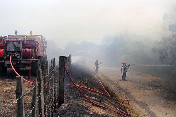 Garons (Gard) - les pompiers interviennent sur un feu de broussailles - 29 juillet 2015.