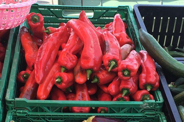 Des poivrons en mauvais état sur le marché de La Source, à Orléans.
