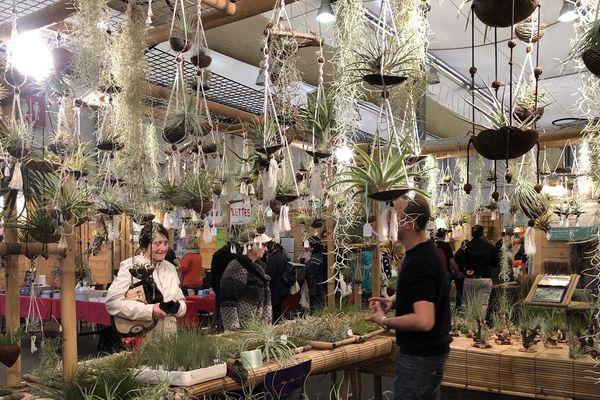 Le salon Bio and Co accueille 225 exposants sur quatre jours au parc des expositions du Wacken.