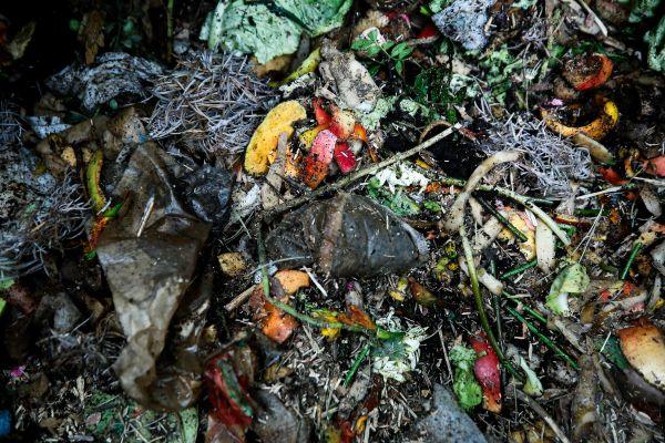 Un tiers de nos poubelles sont composées de biodéchets, qui sont eux mêmes composés principalement d'eau.