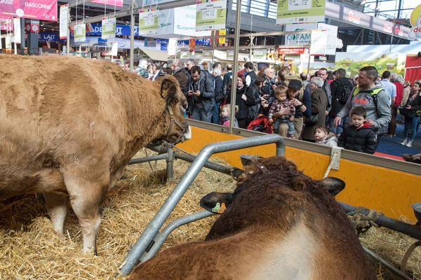 Tous les ans, le Salon International de l'Agriculture est un rendez-vous très attendu pour les professionnels comme pour le public. En 2018, il se tient du samedi 24 février au dimanche 4 mars au Parc des Expositions à Paris.