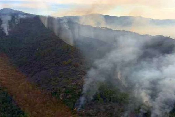 Saint-André-de-Valborgne (Gard) - vue aérienne du feu qui a détruit 110 hectares de forêt en Cévennes - 31 juillet 2015.