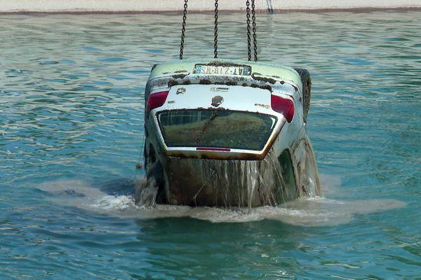 Les plongeurs ont dénombré 700 carcasses empilées les unes sur les autres.