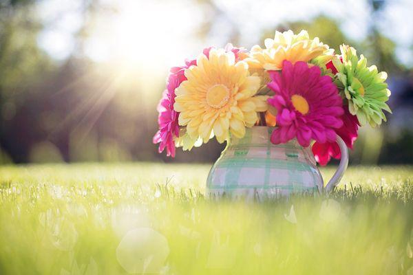 Pour accueillir le printemps