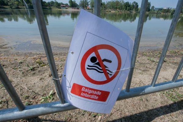 Pollution aux cyanobactéries : depuis jeudi 3 septembre, la baignade est interdite dans le lac de Belle-Isle