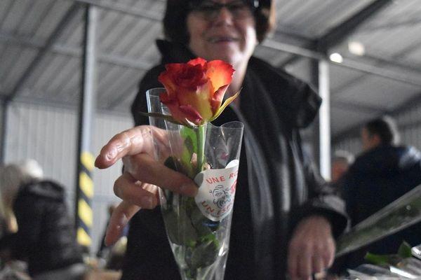 Après avoir enlevé les épines, placé la rose dans un sachet et scotché celui-ci... La fleur est prête.