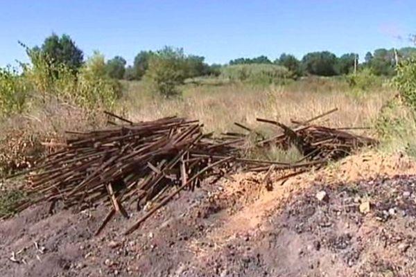 Un homme est mort en août 2010 pour empêcher un vol de piquets de vignes