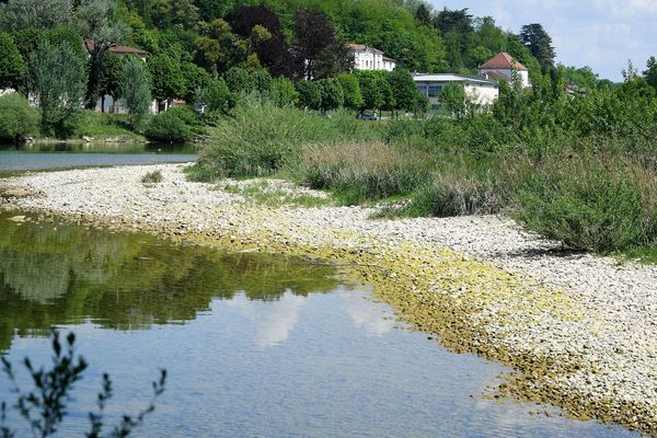 Le 24 avril dernier, l'Ain affichait un niveau extrêmement bas, suite à un premier épisode de sécheresse précoce. L'été s'annonce délicat pour toute la région Auvergne-Rhône-Alpes.