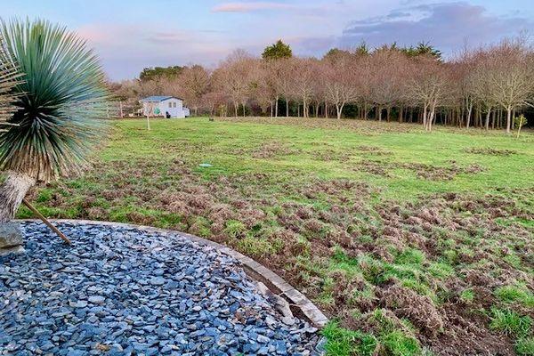 Les hardes de sangliers se jouent des classements parcellaires et saccagent la nuit les propriétés des habitants de Préfailles en Loire-Atlantique